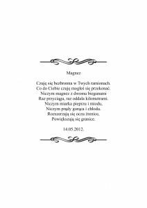 Magnes-1